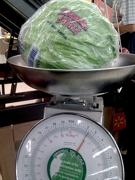 A head of iceberg lettuce wrapped in plastic, sitting on an aluminum produce scale.