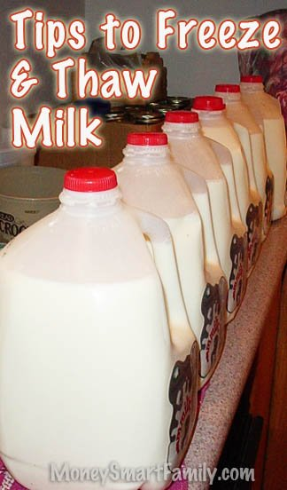 6 gallons of milk on the counter ready to be frozen