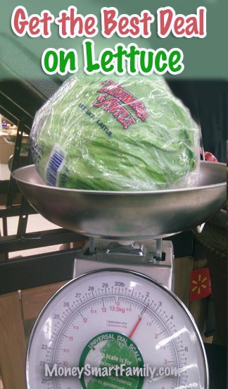 Buying Leaf or Iceberg Lettuce? Which Lettuce is best to buy?/ #BestLettuceDeal/ #BuyingLettuce/ #BuyingProduceCheap/ #BuyingProduceOnABudget