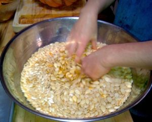 A large silver bowl filled with brine and pumpkin seeds being stirred by hand.