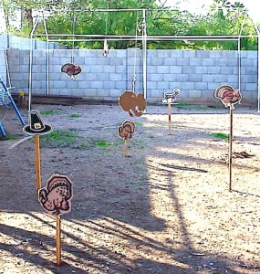 Thanksgiving turkey shoot targets on wooden stakes.