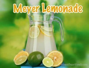 A pitcher of lemonade surrounded by limes and lemons.