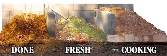 3 compost piles - done, cooking, fresh.