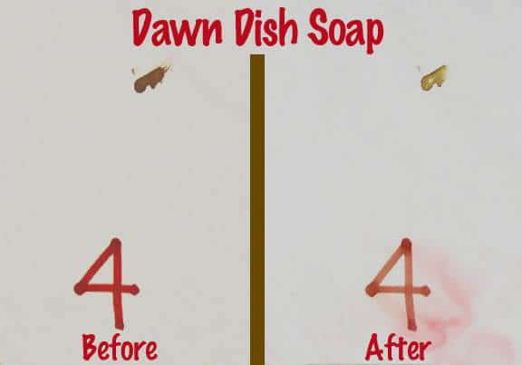 Dawn Dish Soap Blood Removal Test