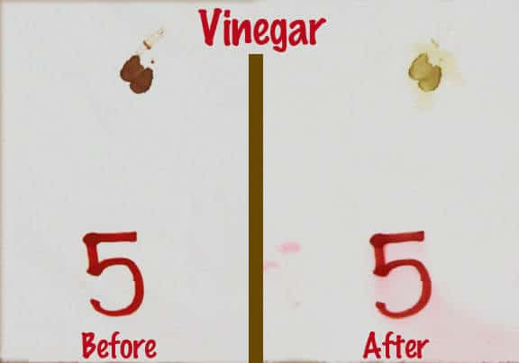 Vinegar Blood Spot Removal Test