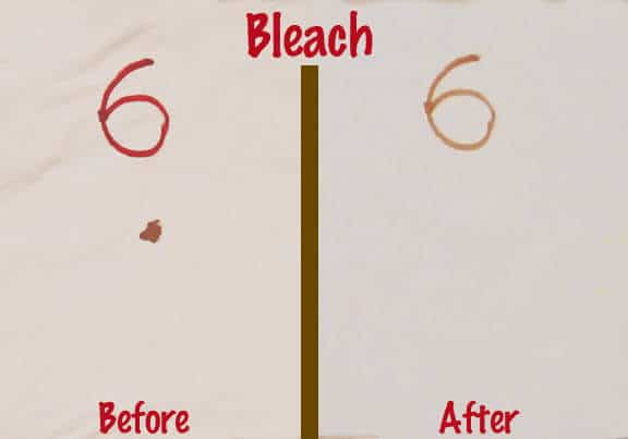 Bleach & Water Blood Removal Test