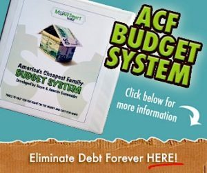 ACF Budget System ad.