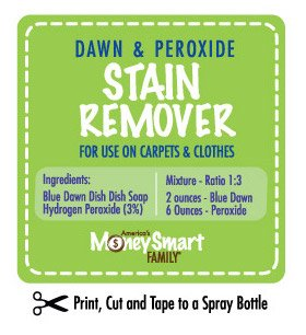 DIY Dawn and Peroxide Carpet Spotting Solution.