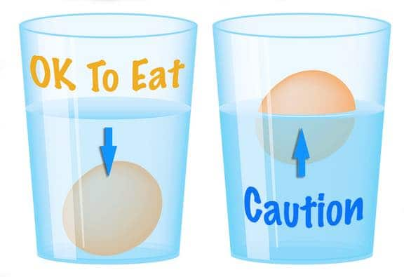 Egg Float Test - brown eggs in a glass of water