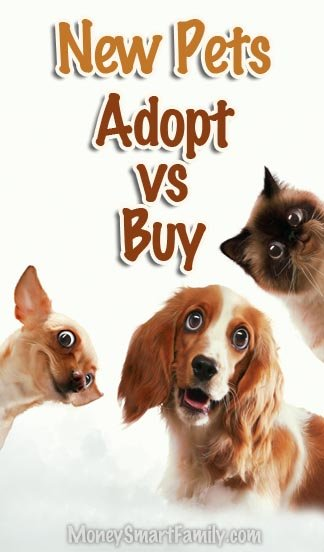 Should You Adopt a Pet Rather than Buy One? Here's costs of pet ownership and where to adopt one!