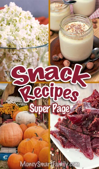 Amazing Snack Recipes Page which includes homemade beef jerky, yogurt, air-popped popcorn & pumpkin seeds. #SnackRecipes
