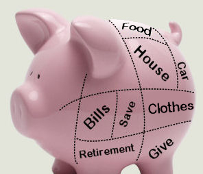 A pink piggy bank with budget categories on its side.