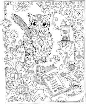 Dover Adult Coloring book pages.